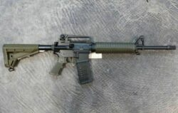 Oberland Arms GZR