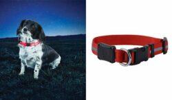 NiteIze NiteDawg LED Dog Collar RED/Orange