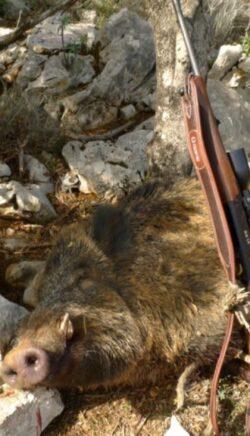 Jagdwochenende in Kroatien am Meer von Do - So